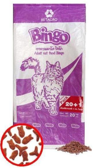 bingo cat